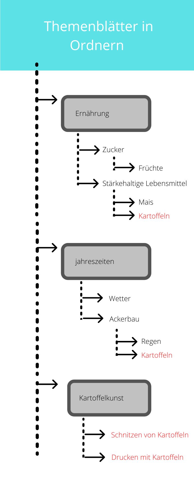 Medienverwaltung in Ordnern